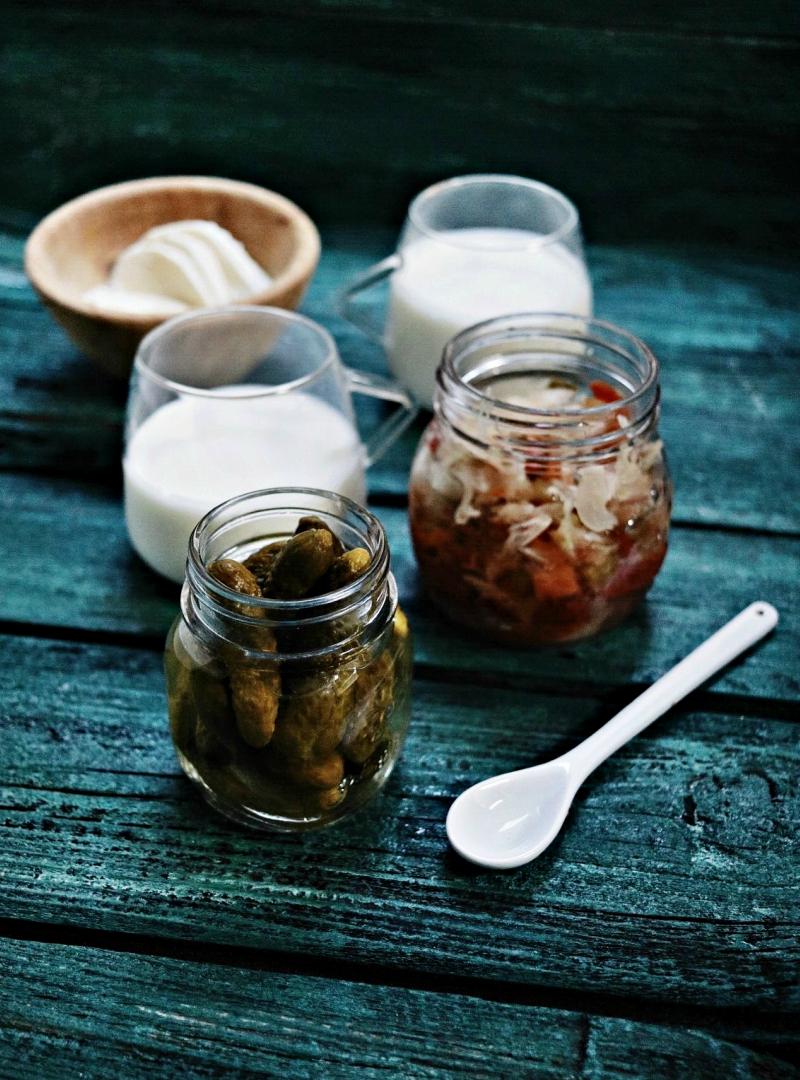 Probiotici, prebiotici, mikroorganizmi [ važnost konzumiranja fermentiranih namirnica ]