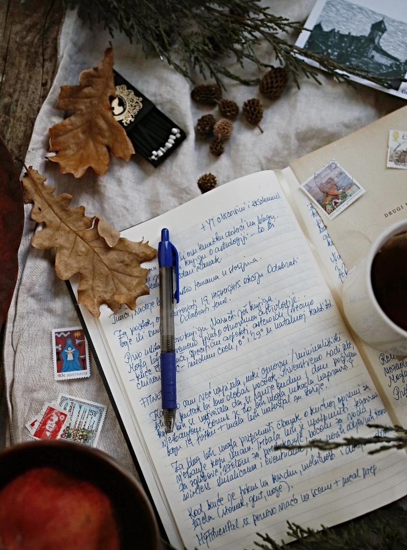 prednosti vođenja dnevnika