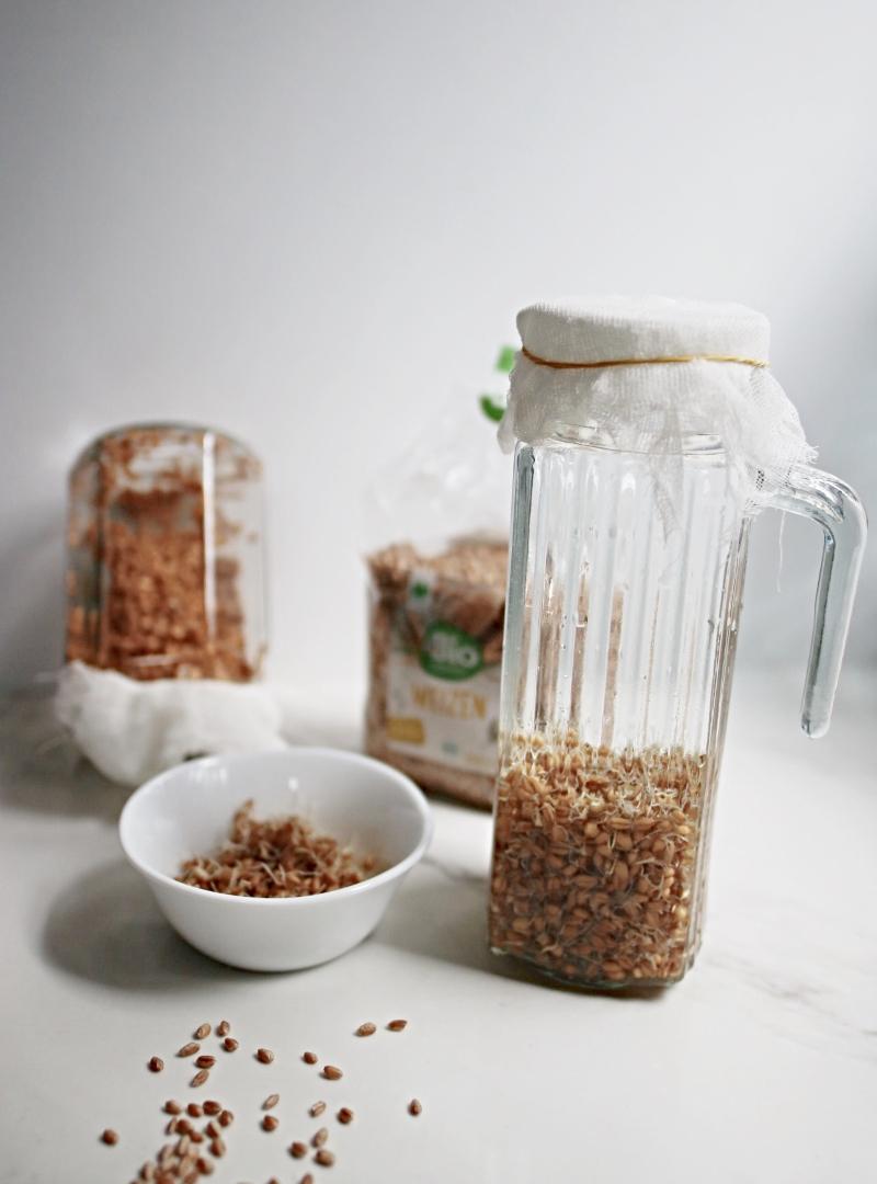 Napravite probiotik kod kuće [ Rejuvelac ]